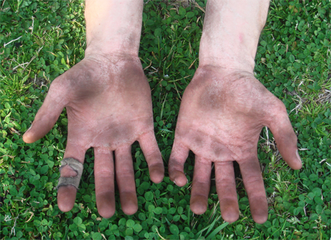 dirty-working-hands-green-grass